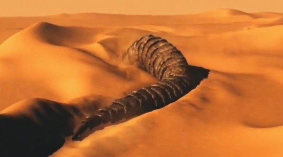 Worm on Dune